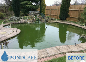 Norfolk pond - before PondCare