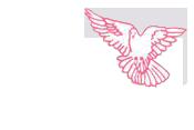 Peak Care Logo | Main Website Logo in Menu area