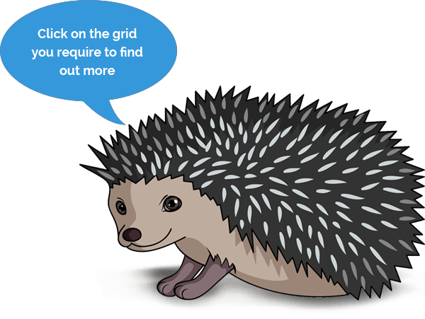 Hedgehog Graphic