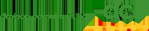 davison consultants logo
