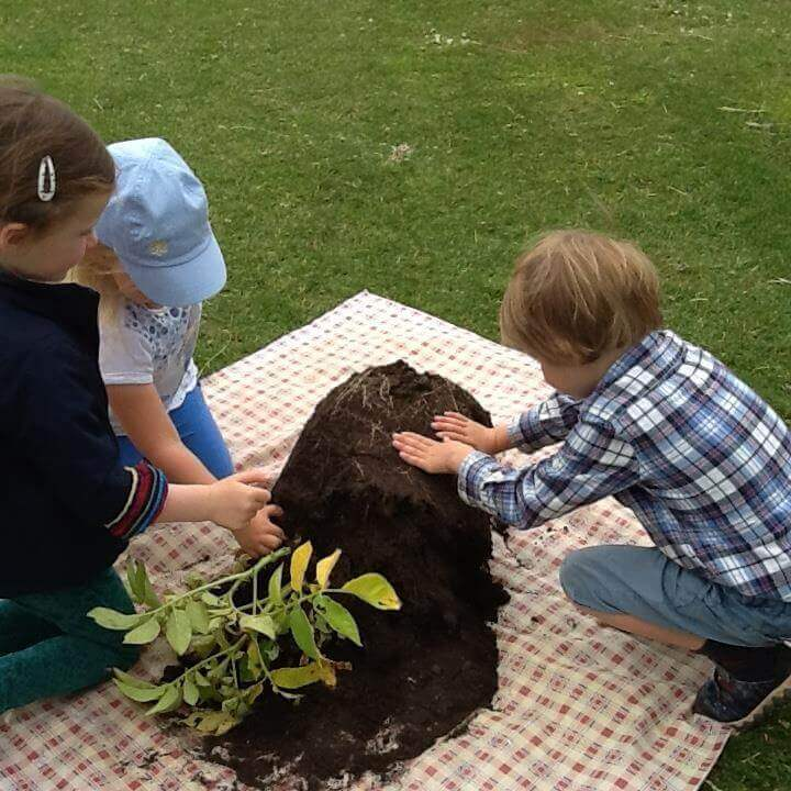 children potting a plant