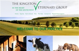 Kingston Vets - Veterinary website design by Toolkit Websites, professional web designers