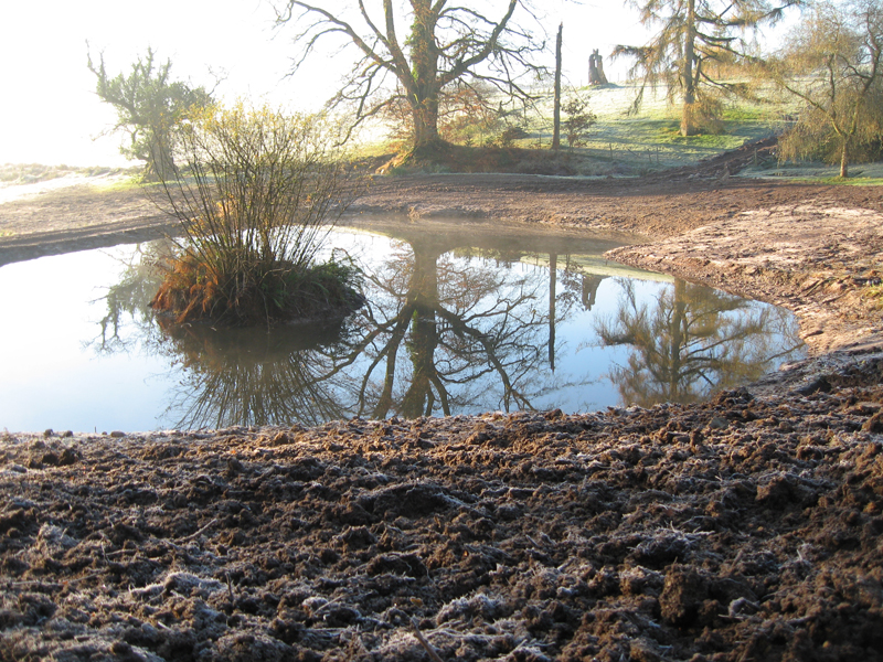 Large pond restored at Bittiscombe Manor Somerset