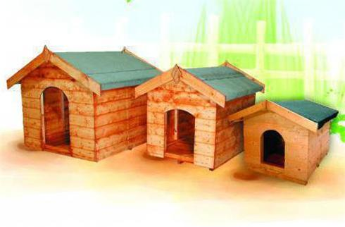 Kennels Animal Coops And Stables Elford Sheds