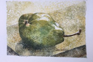 French pear. Watercolour on paper. 4in x 6in. SOLD.