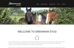Drewmain Stud - Equestrian website design by Toolkit Websites, Southampton