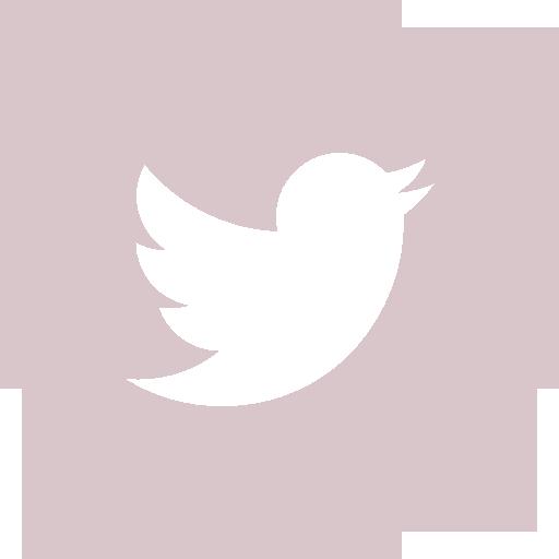 001-twitter-logo-button