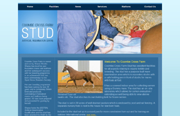 Coombe Cross Farm Stud - Equestrian website design by Toolkit Websites, Southampton