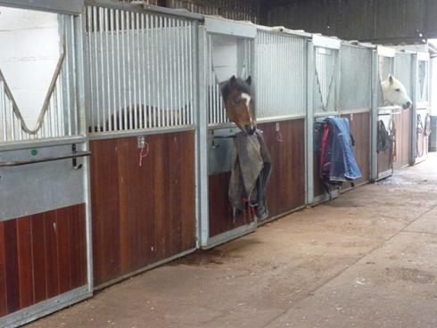 Livery Yard Amp Facilities Valley Farm Equestrian Centre Ltd