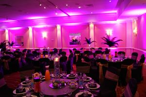 LED Uplighting - Purple