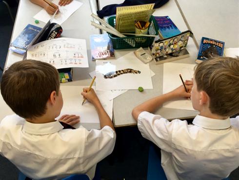 Children drawing invertebrates