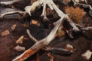 Bog Root Cuaig 1090 x820mm