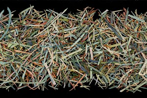 Silage Grass V   1065 x 495mm