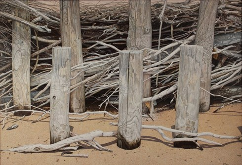Brushwood Fence 2 1024x 698