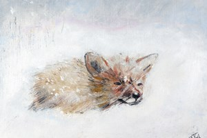 'Fox in a Blizzard'