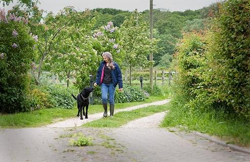 Karen Carpenter walking dog