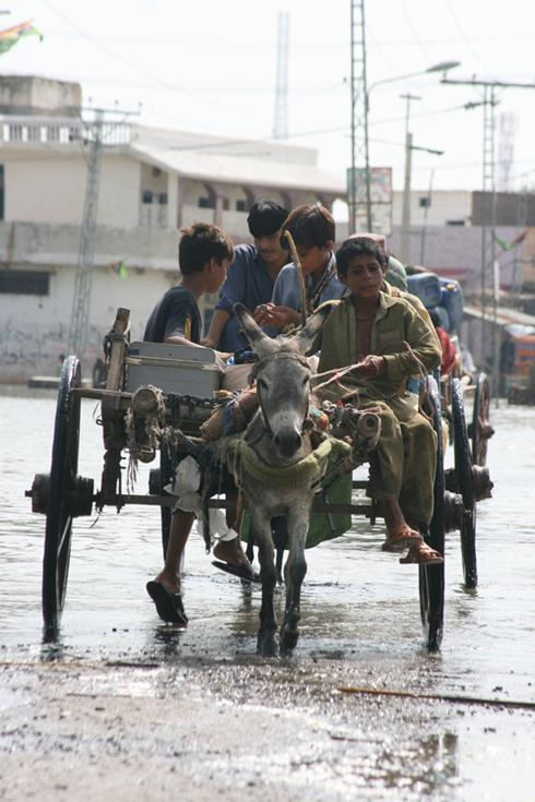 Images of the Pakistan Floods in the Indh province in southern Pakistan.