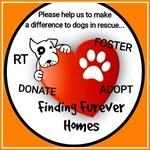 Finding-Furever-Homes-Logo