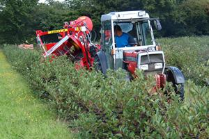 JOANNA 4 aronia berry harvester in the UK