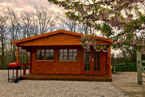 Woodpecker Cabin