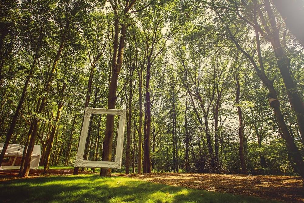 Photo Frame woodland setting