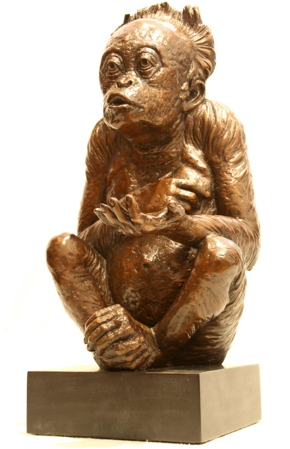 Little Beggar side-view left-facing