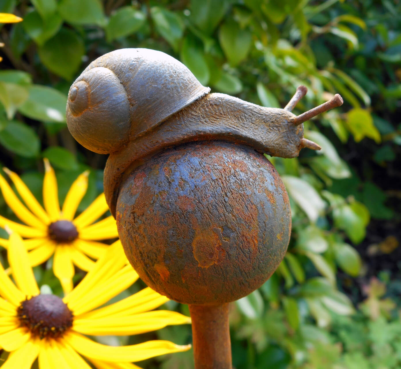 Snail on Ball side-view