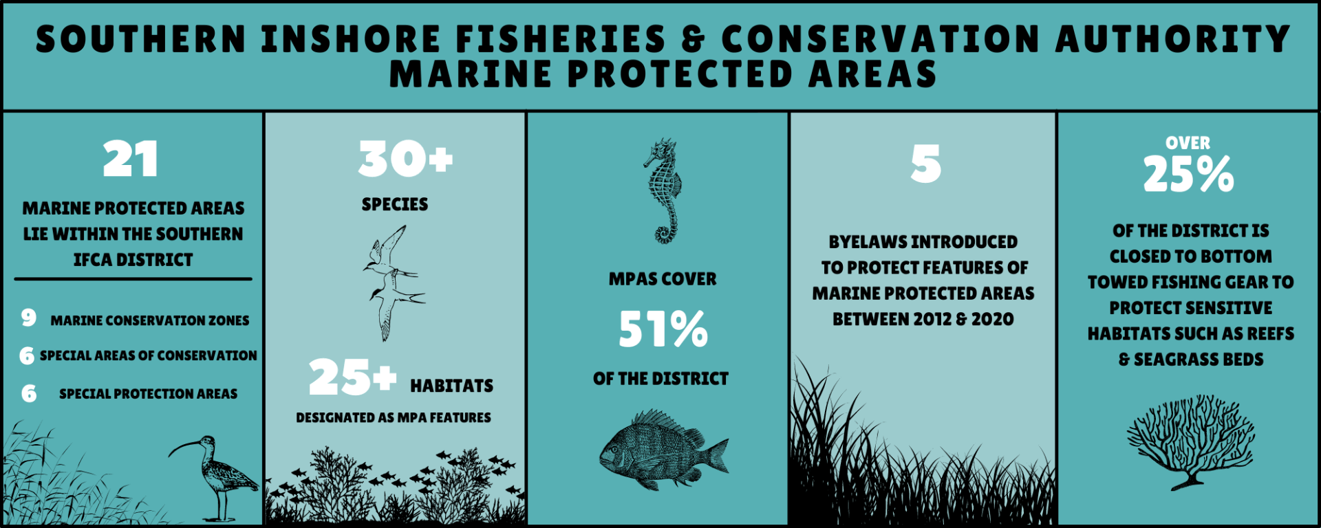 Southern IFCA | SIFCA | Marine Protected Areas | MPA Summary Infographic