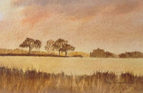 November Fields, Uggeshall, Suffolk  28x53cm Pastel
