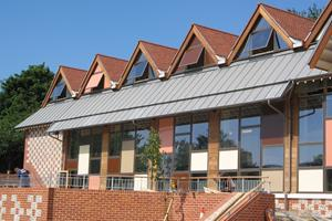 Lewes Library - VM Zinc standing seam roofing - Cheesmur - £21,000