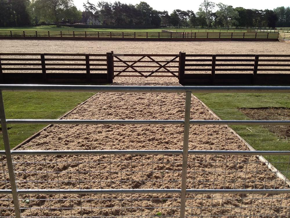 30m x 50m riding arena with waxed sand surface