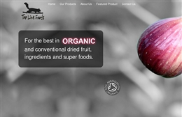 Top Line Foods - Catering website design by Toolkit Websites, Southampton