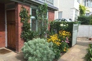 Selection of plants and shrubs within border to front elevation of property. Including climbing rose and clematis, eurphobia, veberna, black eye susans and peach tree.