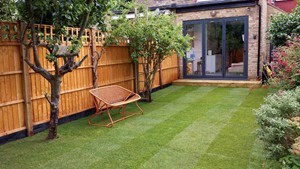 Rolawn Medallion Turf laid on a lawn in Queens Park, North West London