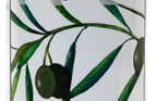 Organic Green Olives (Pitted)