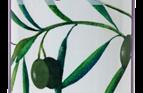 Provencale Olives