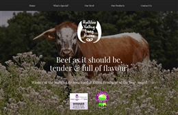Halliloo Longhorn Beef - 1-page website design by Toolkit Websites, expert web designers uk