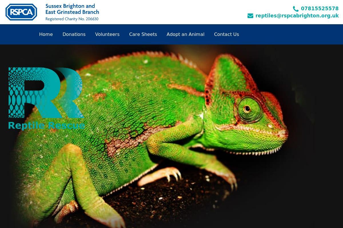 Welcome To Rspca Reptile Rescue Rspca Reptile Rescue