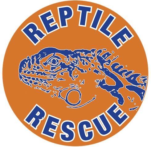 Orange Logo for RSPCA Reptile Rescue Brighton
