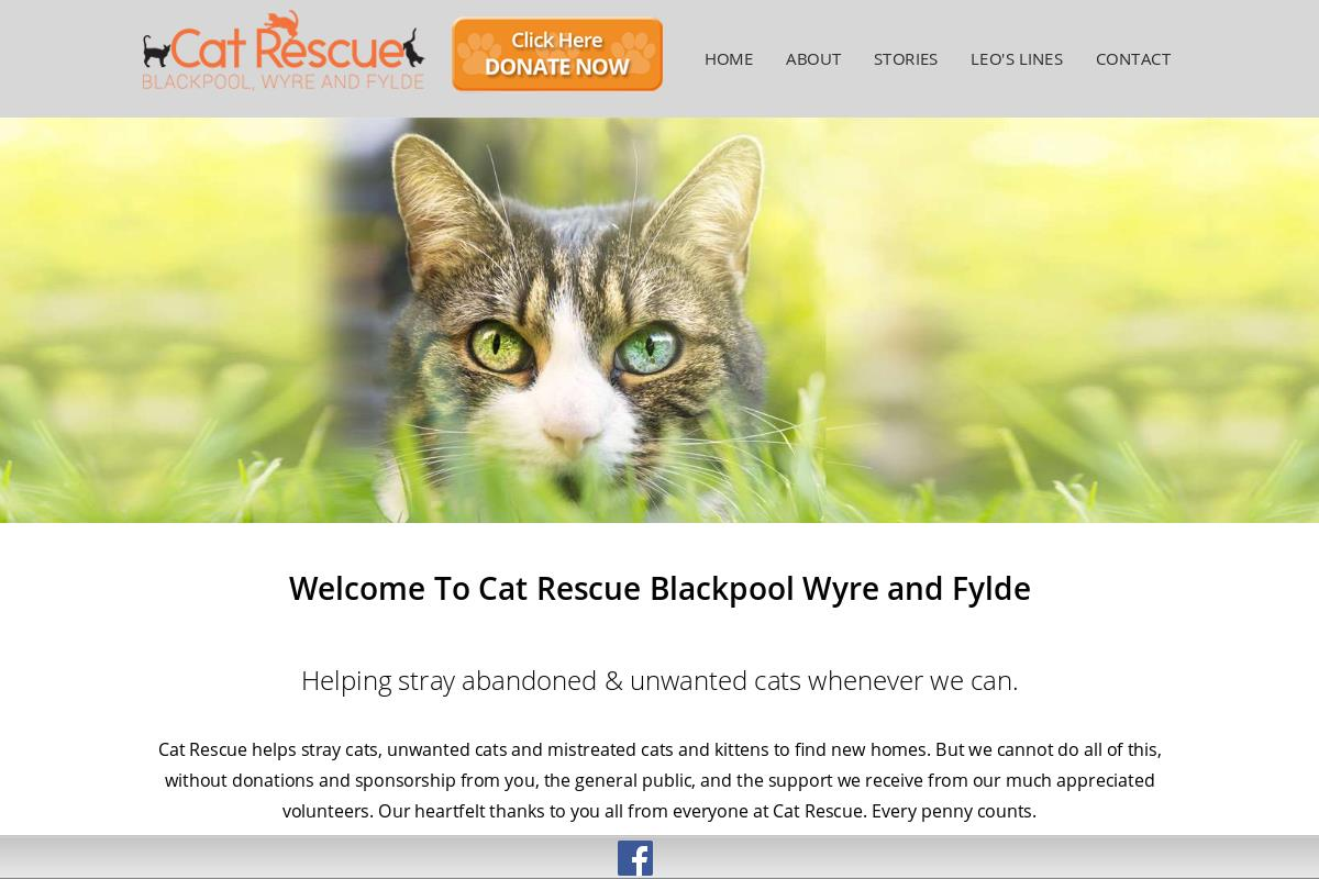 Blackpool And Fylde Cat Rescue