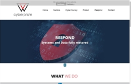 Cyberprism - IT website design by Toolkit Websites, professional web designers