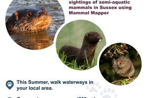 WaterWay Poster