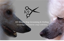 K9 Shears - website design by Toolkit Websites, professional web designers