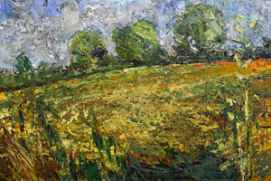 The meadow mowed                         oil on canvas    92x142cms     2016
