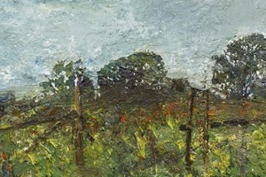Meadow at St Breward 11