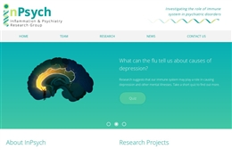 The Inflammation and Psychiatry (InPsych) Research group - Psychiatry website design by Toolkit Websites, professional web designers
