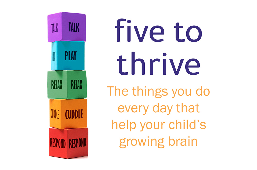 Five To Thrive Building Blocks