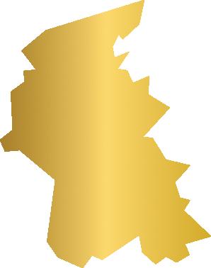 Denbighshire Icon
