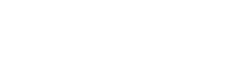 DDC Logo | Dynamic Development Consulting | White | Graphic Logo