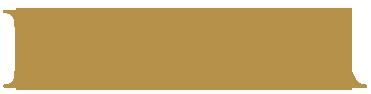 Noka logo